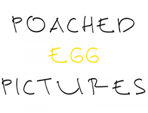 Poached Egg Pictures